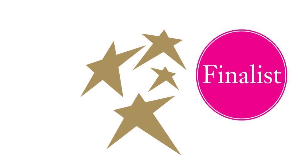 Scratch-Stars-2015-finalist-logo